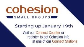 Cohesion Restarts January 19th